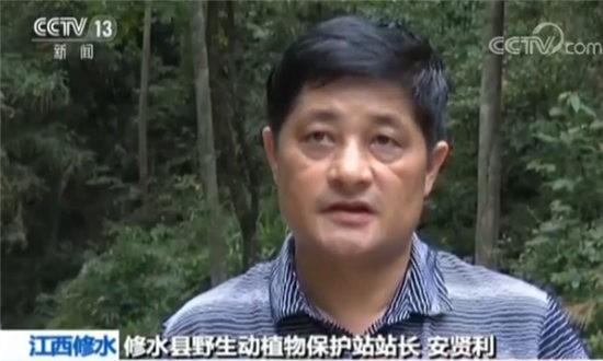 修水县野生动植物保护站站长安贤利