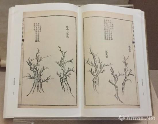 《芥子园画谱》中树的画法