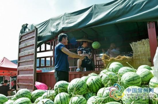 """常州人""""吃瓜""""胃口大 每天至少""""消化""""1000吨"""
