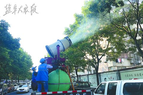 """""""洋辣子""""横行盐城街头  园林:实为锦斑蛾幼虫"""