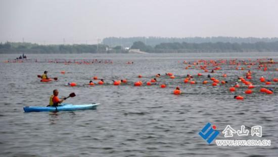 千余名游泳爱好者畅游镇江金山湖