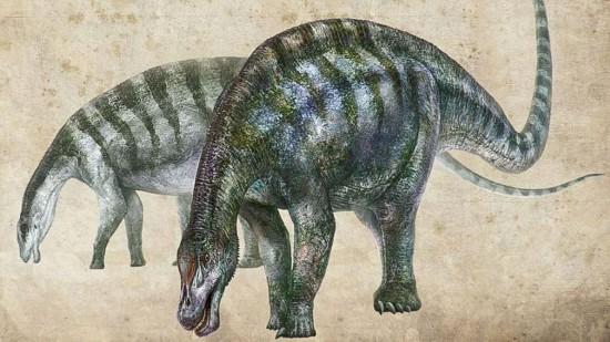"""中国发现""""神奇灵武龙""""化石可能改写恐龙谱系"""