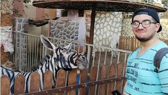 """开罗动物园被指将驴画成""""斑马"""",""""愚弄""""游客"""
