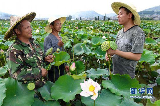 建瓯:做大传统产业 致富一方群众