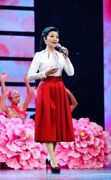 中国文联文艺志愿服务团8月10日走进盐池慰问演出
