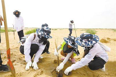 """为了沙漠边的孩子,他们种下一片""""心愿林"""""""