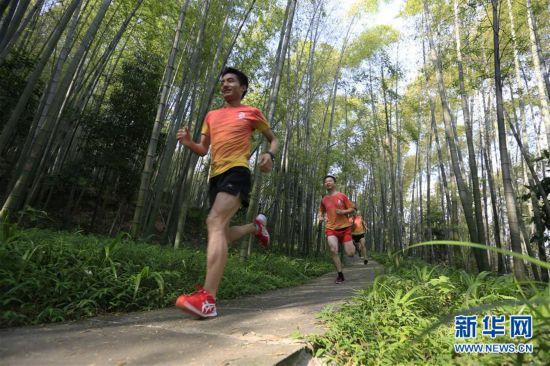 跑步山林间