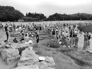 无锡蠡湖渔父岛数百人野泳 景区存在管理短板