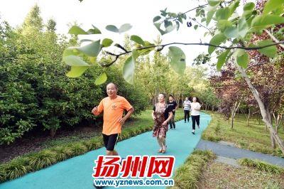 """扬州老人坚持公园""""打卡""""健身5年身体变好"""