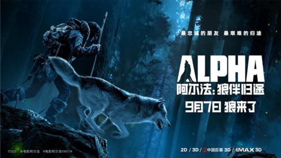 《阿尔法:狼伴归途》定档9月7日 海报预告双发