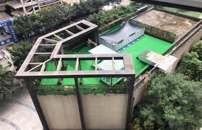 """商铺楼顶成了""""狗狗乐园"""" 限期整改商户""""按兵不动"""""""