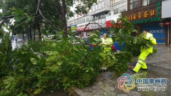 狂风暴雨刮倒大树 常州两孩童被困家中