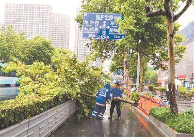 """台风""""温比亚""""发威 南京市区不少树枝被刮倒"""