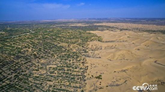 治沙无问西东 宁夏成全国首个实现沙漠化逆转的省区