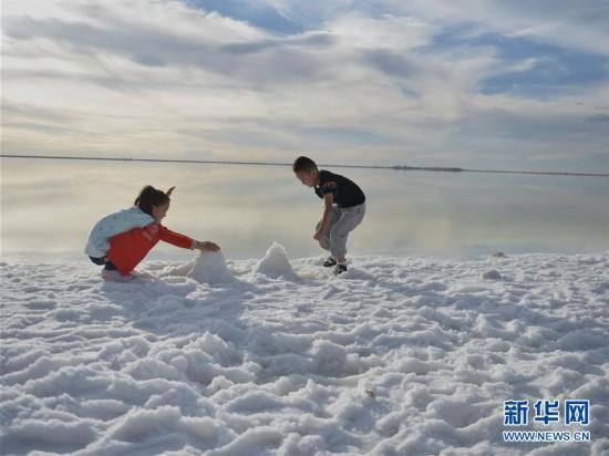 (社会)(6)走进察尔汗盐湖