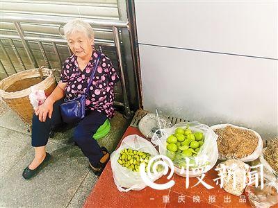 68岁独臂婆婆摆地摊卖草药网络走红 为啥坚持