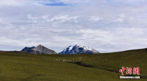 資料圖:雪后的祁連山。 武雪峰 攝