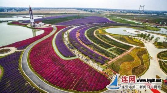 图片为今年灌云县在伊甸园举办的万人健步走活动航拍