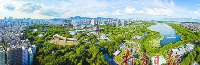 """深圳:中国最""""拥挤""""城市,走出特色创森路"""