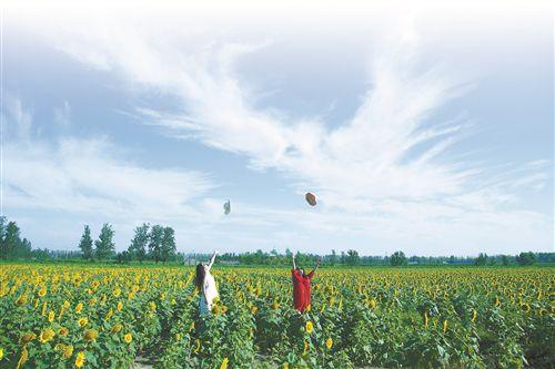 江苏沛县乡村振兴路径:改善农村人居环境