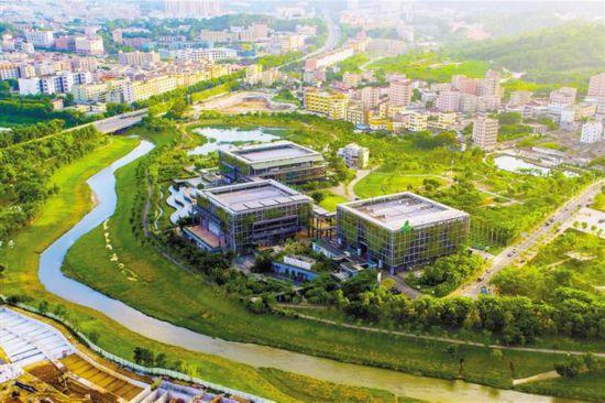 位於龙岗区坪地的深圳国际低碳城,城市品质在加速提升. 采访对象供图