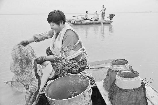 新疆庫車:金秋豐收季螃蟹迎游客