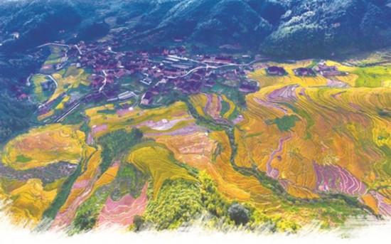 宁德古田:一座山城入梦来