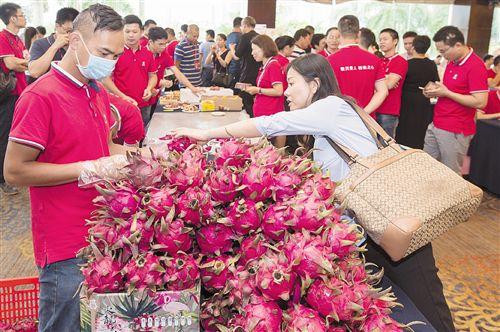 第15屆中國-東盟博覽會農業展開展 企業參展熱情高