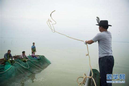 (经济)(1)湖州太湖渔民迎丰收