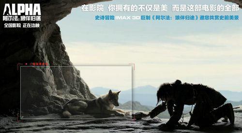 年度最佳亲子电影《阿尔法:狼伴归途》发新海报阖家齐享史前奇旅