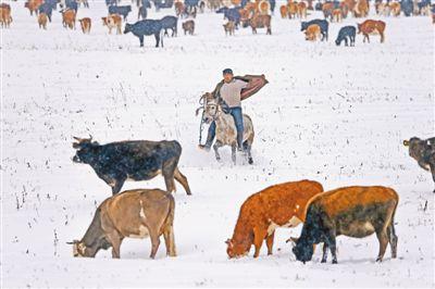 新疆哈密迎来今秋第一场雪