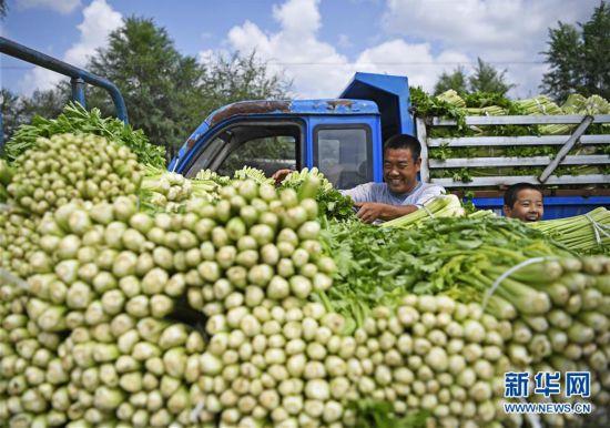 (新华全媒头条・图文互动)(7)中国扶贫的西海固答卷――宁夏奋进60年巡礼之脱贫攻坚篇