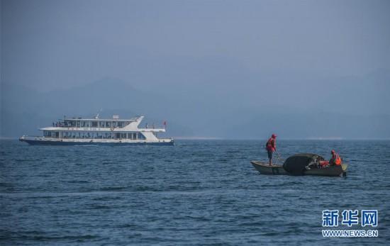 """(环境)(5)千岛湖""""公益船队""""共护""""一湖碧水"""""""
