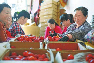 节日临近,新疆水果热销四方