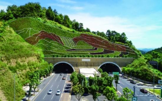 治理后的中環路楊柳井隧道頂坡面。