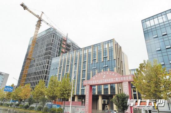 长沙高新区信息产业园芯城科技园项目正在抓紧建设。长沙晚报记者 邹麟 摄