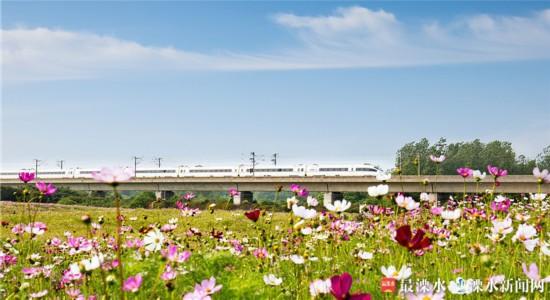 """南京溧水将打造""""城在林中 人在景中""""绿化景观"""