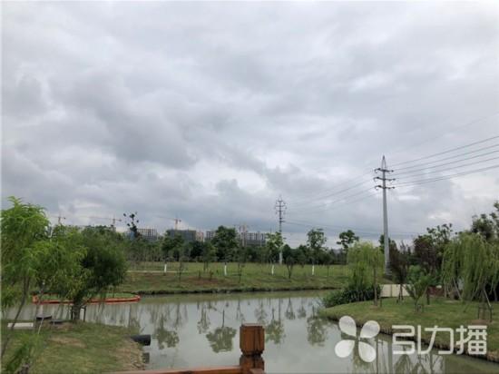 葡京娱乐网址七年造成片林35.81万亩 陆地森林覆盖率29.91%