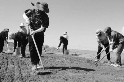 南农学生10天播种固沙植物30余亩
