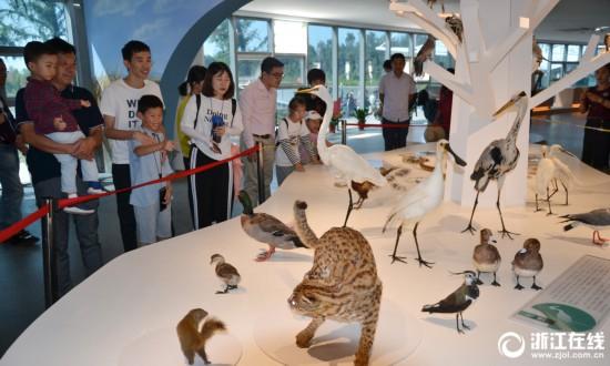 台州玉环:长假去科普馆了解动植物知识