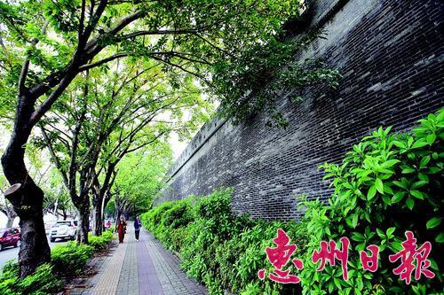 """""""惠州之美不减杭州"""""""
