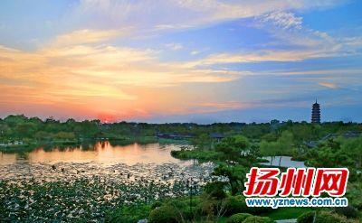 """迎""""寒露"""" 揚州8日起降雨降溫后天最低12℃"""