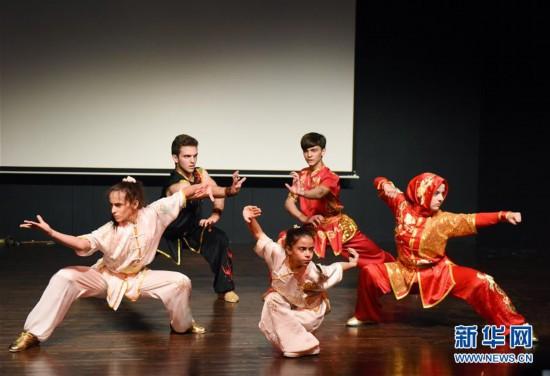 (XHDW)(3)孔子学院武术巡演在土耳其大学开演