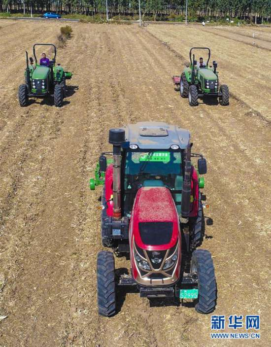 (经济)(3)河北深州:用好闲置土地 促进农民增收