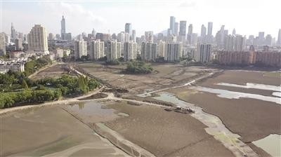 南京莫愁湖改造疑似要建人工岛?施工方回应