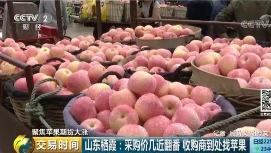 """苹果""""红""""了!期货价格几近翻番 收购商到处找苹果"""