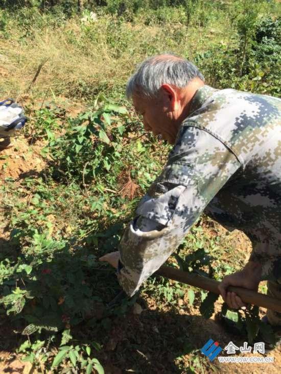 普查发现镇江中药材资源破坏严重 只剩300多种
