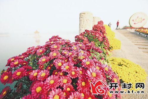1118wba9-2-2_看图王