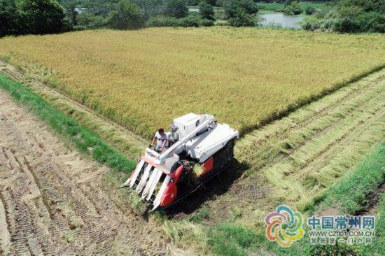 坚持食惠民生 常州粮储安全开创多项全国第一