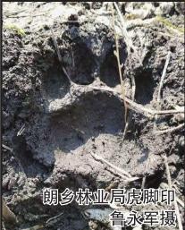http://www.hljold.org.cn/heilongjiangfangchan/42538.html
